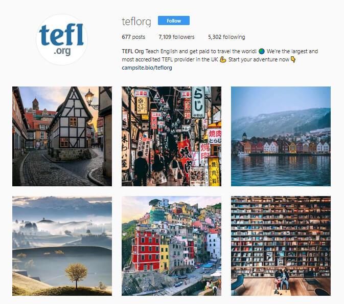 TEFL Org instagram